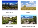 Types of Biomes Nomenclature Cards