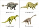 Prehistoric Animals Nomenclature Cards (Dinosaurs)