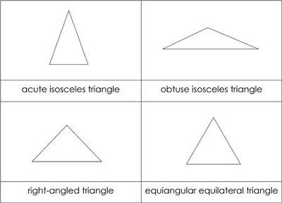 Types of Triangles Nomenclature Cards