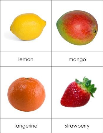 Types of Fruit - Beginning