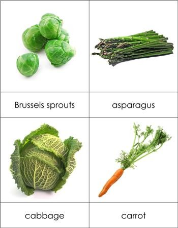Types of Vegetables Nomenclature Cards